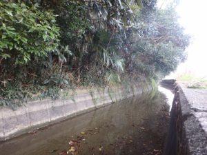 岡山の「人喰い用水路」高齢者の転落が多発