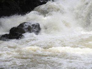 高齢男性が雨で増水の水路に転落して死亡 京都・伏見区