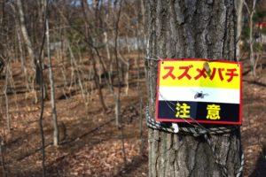 スズメバチに100か所刺される 86歳男性が死亡 和歌山